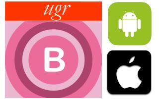 Portfolio Icon bug